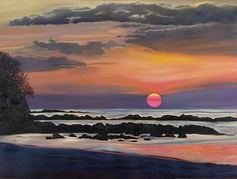 Costa Rican Sunset II by Pamela Bell