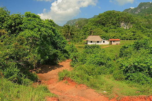 Cottage at The Vinales Valley by Luis Marquez