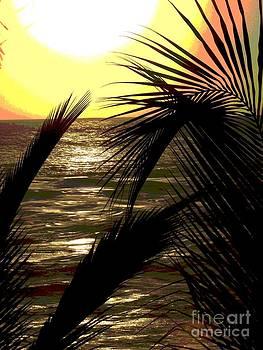 Coucher De Soleil - Ile De La Reunion by Francoise Leandre