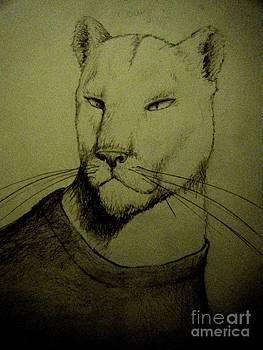 Cougar by Ann Morris