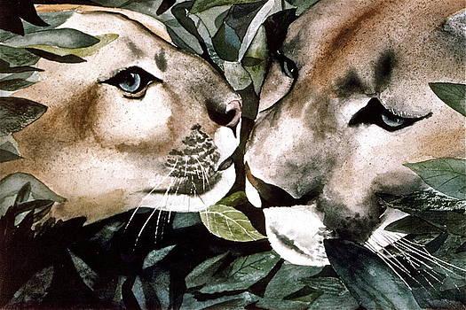 Frank SantAgata - Cougar Kiss