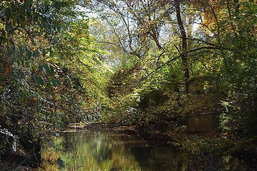 Counrey Creek 3 by Beverly Hammond