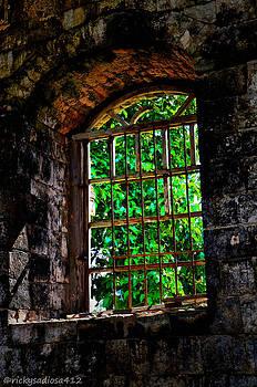 Count of Monte Cristo Dungeon Window by Enrique Rueda