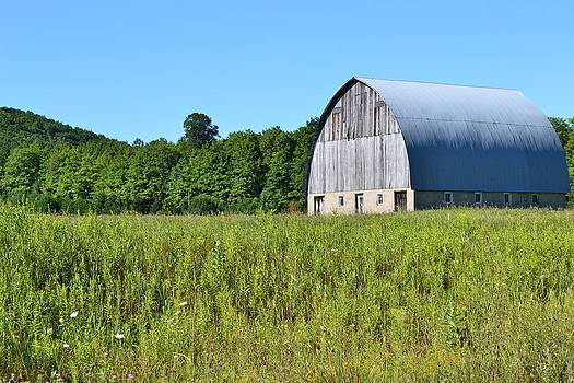 Country Barn by Ted Kitchen
