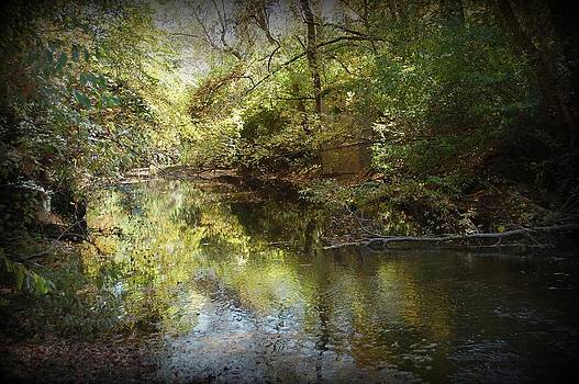 Country Creek 1 by Beverly Hammond