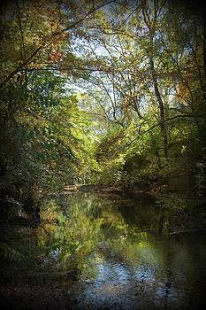 Country creek 2 by Beverly Hammond