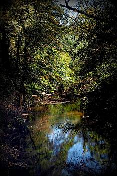 Country Creek 4 by Beverly Hammond