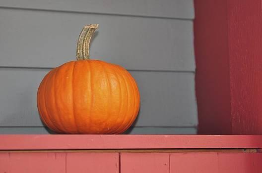 Country Pumpkin by Ryan Louis Maccione