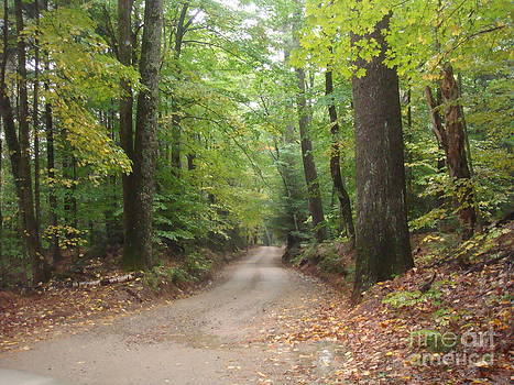 Country Road by Catherine DeHart