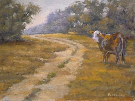 J P Childress - Country Road