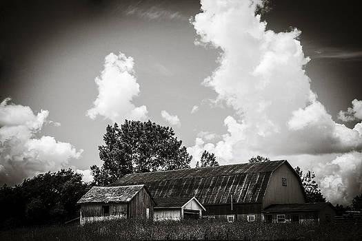 Countryman  by Vanessa Ferland