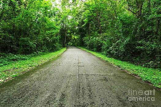 Countryside Road by Mongkol Chakritthakool