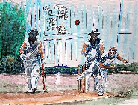 County Cricket by Richard Jules