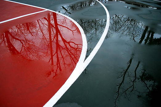 Court Reflections by David Rothschild