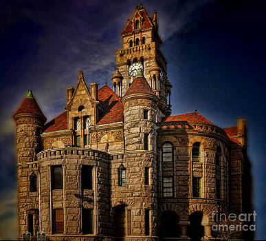 Courthouses of Texas No 1 by Diana Cox