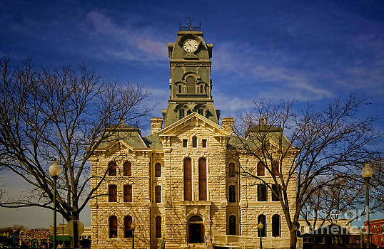 Courthouses of Texas No 2 by Diana Cox