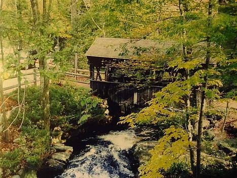 Nancy Fillip - Covered Bridge