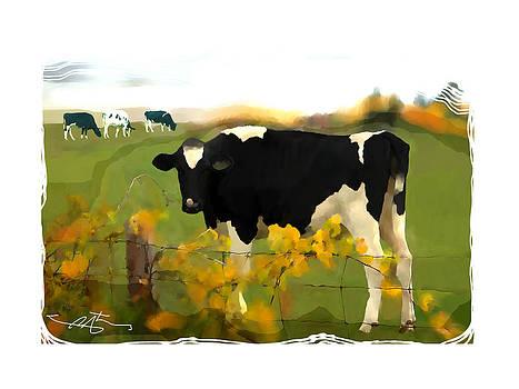 Cow Folk by Bob Salo