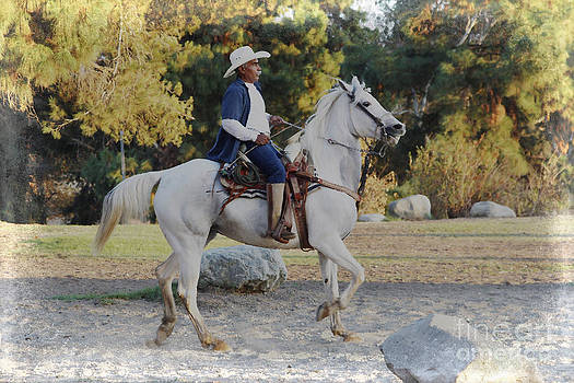 Cowboy on his white horse by Nina Prommer