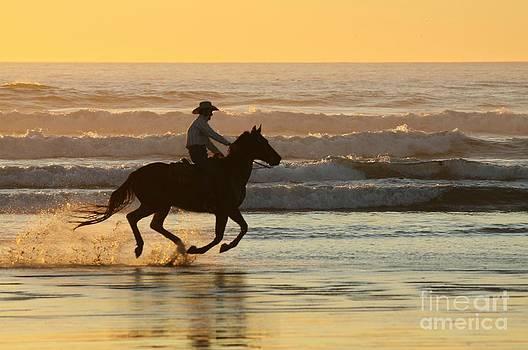 Cowboy on the Beach by Lori Bristow