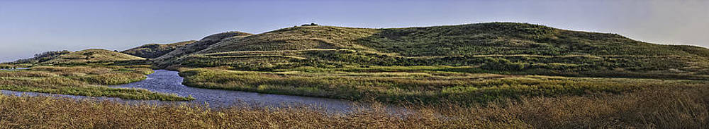 Coyote Hills Regional Park by Nathaniel Kolby