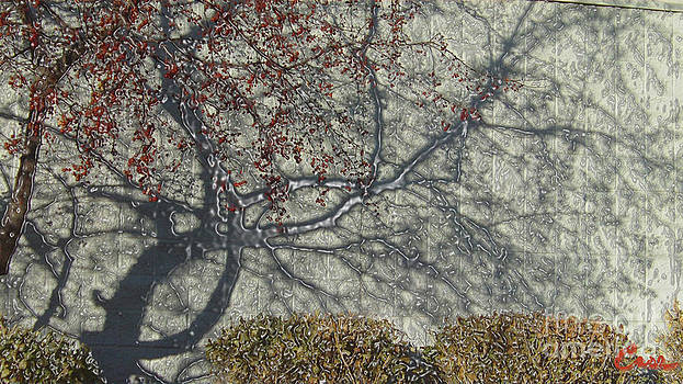 Feile Case - Crabapple Mercury Shadows