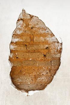 Kantilal Patel - Cracked Plaster Leaf