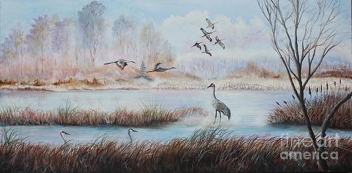 Cranes Of The Plains by Judy Groves