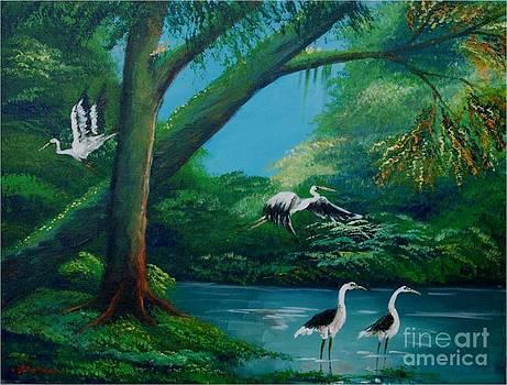 Cranes on the swamp by Jean Pierre Bergoeing