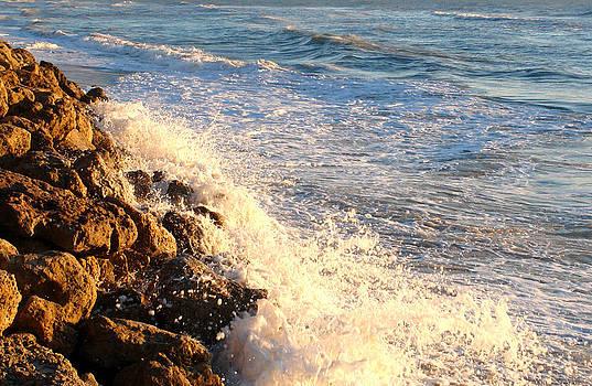 Carmen Del Valle - Crashing Waves