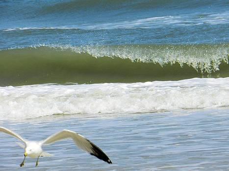 Crashing Waves by Melody McCoy