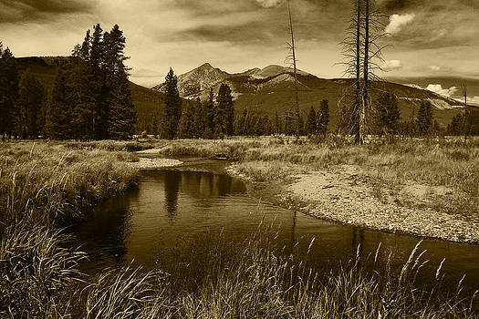 Creek at Kawuneeche Valley  Rocky Mountain National Park by Daniel Chui