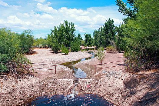 Creek by Benny Kennedy