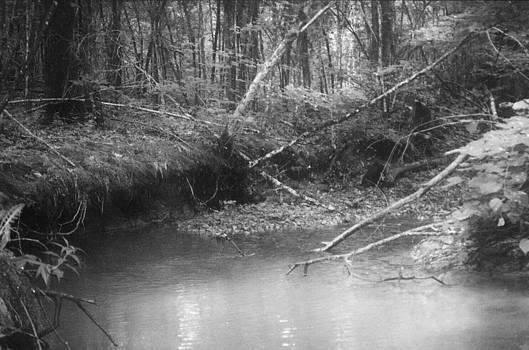 Creek by Floyd Smith