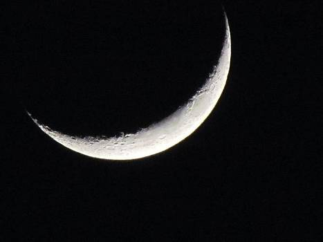 Crescent moon by Bri Antonelli