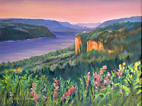 Crown Point Sunrise by Patricia Young