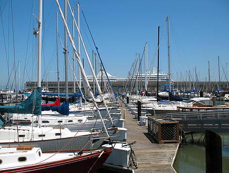 Connie Fox - Boats Galore at Pier 39. San Francisco, California