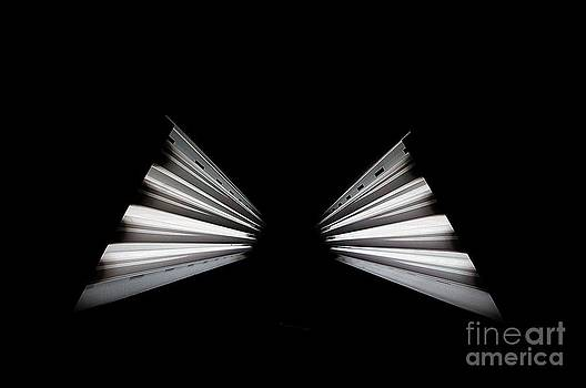 Cruse Light by Bilal Shreif