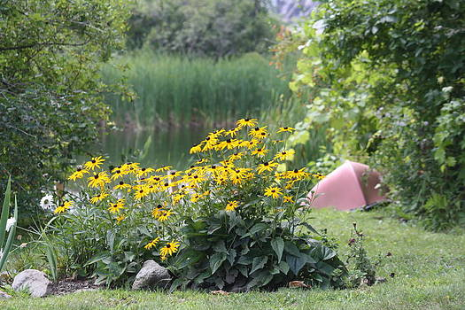 Donna Walsh - Crystal Lake State Park in Barton Vermont