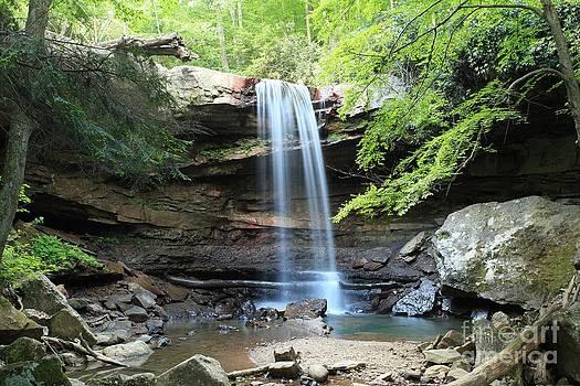 Adam Jewell - Cucumber Falls Pool