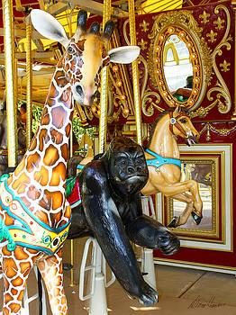 Diana Haronis - Curious Carousel Beasts