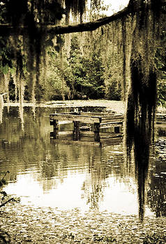 Cypress Swamp Well Head by Shawn McElroy