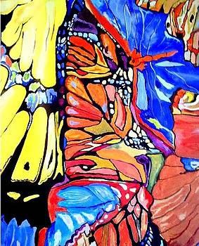 Butterflies Wings  by Sandra Lira