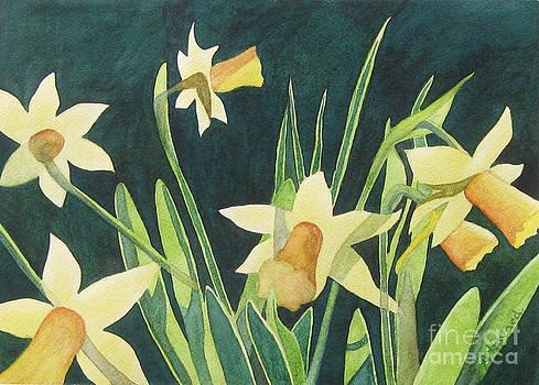 Daffodils by Anne Havard