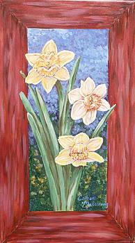 Daffodils by Colleen Masserang