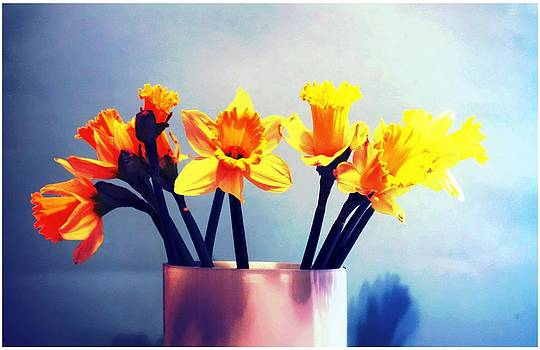 Daffodils with blue by Cathie Tyler