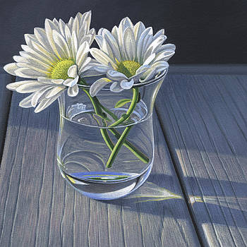 Daisies In Drinking Glass no. 1 by Steven Tetlow