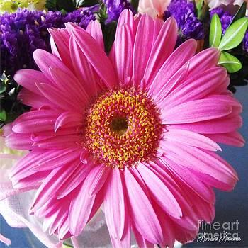 Daisy 3 by Lorraine Louwerse