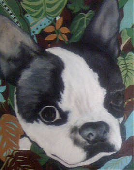 Daisy in the Tropics by Laurie Cantin