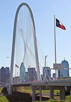 Dallas Arch by Elizabeth Hart